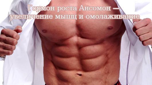 Гормон роста Ансомон — увеличение мышц и омолаживание