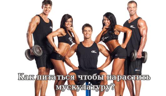 Как питаться чтобы нарастить мускулатуру?