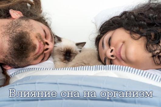 Влияние сна на организм